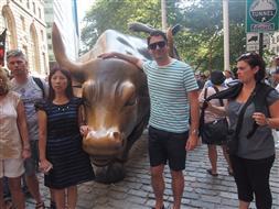 Wall Street Bull_New